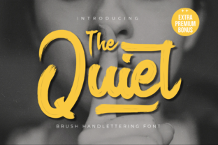 Print on Demand: The Quiet Display Font By Productype 1