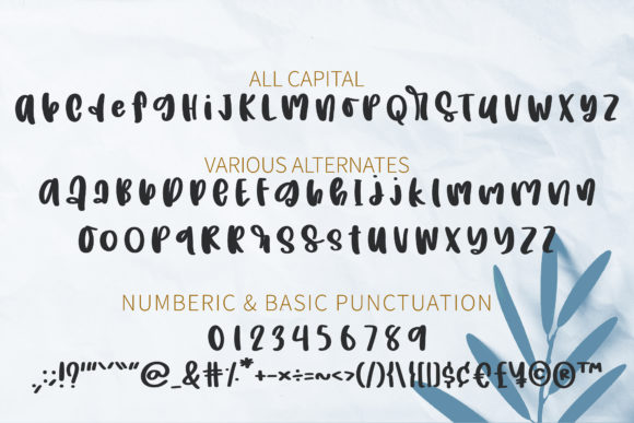 Crown of a Mom Font Font