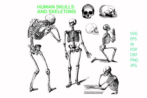 Print on Demand: Skeleton, Skull Thinking, Pray Clipart Graphic Crafts By BOdesign