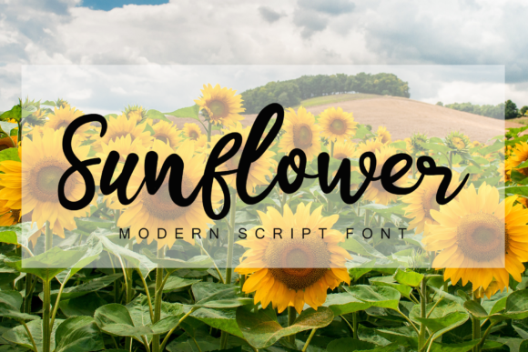 Print on Demand: Sunflower Script & Handwritten Font By giatstudios
