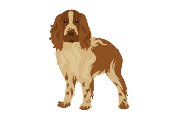 Springer Spaniel Dogs Craft Cut File By Creative Fabrica Crafts