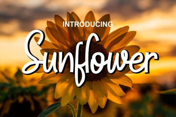 Print on Demand: Sunflower Script & Handwritten Font By Pidco.art