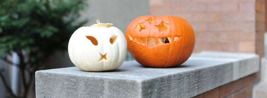The best SVG designs for your Halloween Crafts