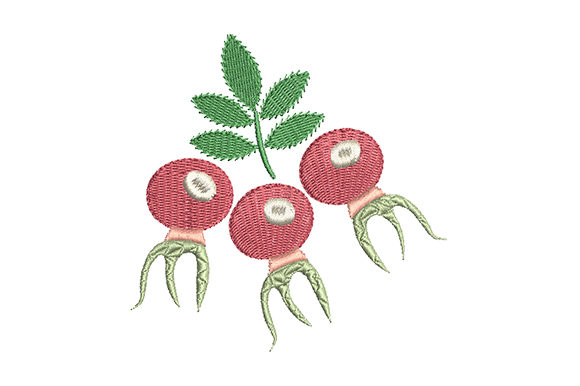 Print on Demand: Red Rose Hips with a Green Leaf Food & Dining Embroidery Design By EmbArt