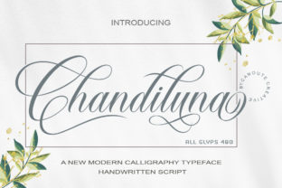 Print on Demand: Chandiluna Script & Handwritten Font By Canoute Creative
