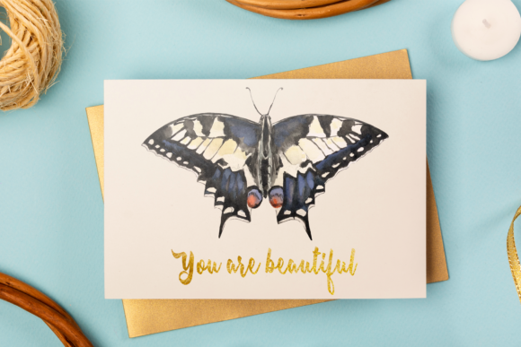 Swallowtail Butterfly Life Cycle Clip Ar Graphic Illustrations By tatibordiu