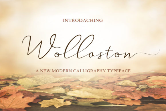 Print on Demand: Wollaston Script & Handwritten Font By Rezastudio