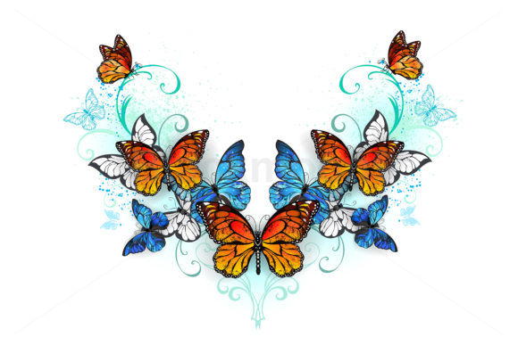 Blue and Orange Butterflies Graphic Illustrations By Blackmoon9