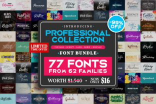 Professional Collection Font Bundle  By Din Studio