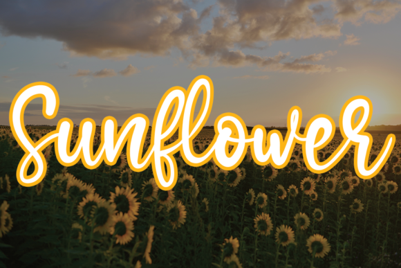 Print on Demand: Sunflower Script & Handwritten Font By andikastudio