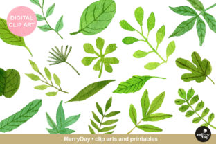 Watercolor Green Leaves Clip Art Graphic Illustrations By MerryDay