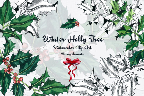 Holly Tree Watercolor Clip Art Graphic Illustrations By BarvArt