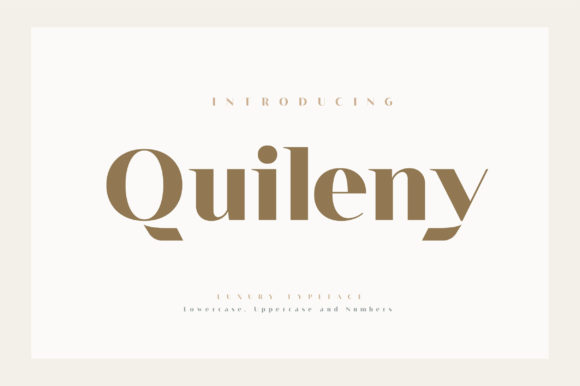 Print on Demand: Quileny Serif Font By geengraphy