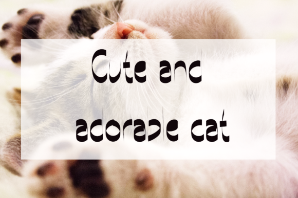 The Cat Font Download