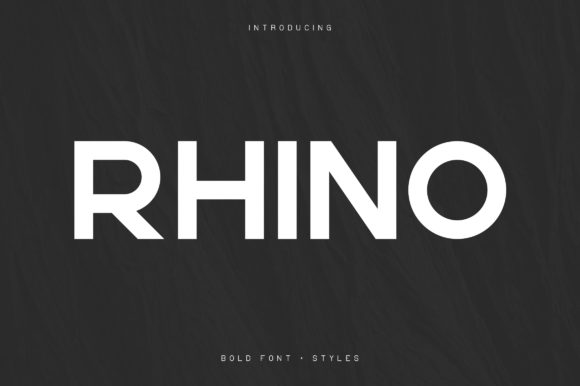 Print on Demand: Rhino Sans Serif Font By vladfedotovv