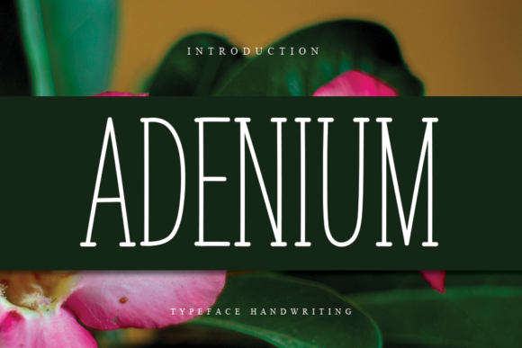 Print on Demand: Adenium Script & Handwritten Font By flowerletter