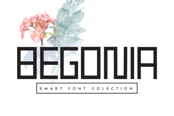 Print on Demand: Begonia Display Font By flowerletter