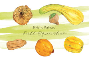 Fall Squashes | 6 Hand Painted Cliparts Graphic Illustrations By Miriam Figueras Illustration