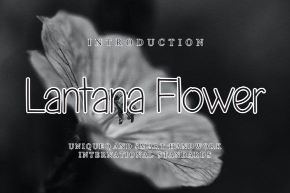 Print on Demand: Lantana Flower Sans Serif Font By flowerletter