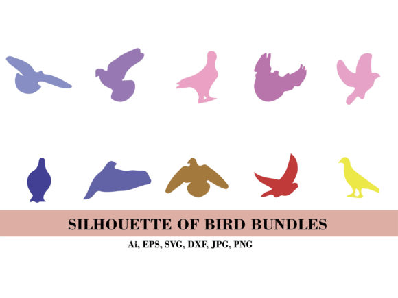 Silhouette Bundle of Any Birds Graphic Illustrations By themagicboxart