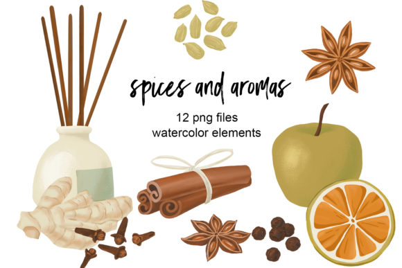Spices and Aromas Clipart Graphic Illustrations By lena-dorosh
