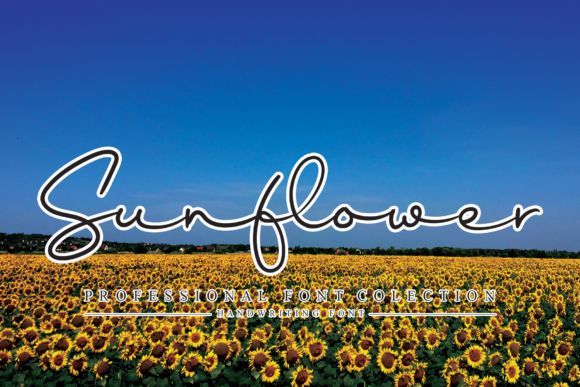 Print on Demand: Sunflower Script & Handwritten Font By LetterW26a