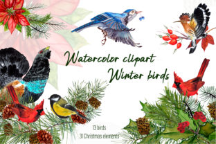 Print on Demand: Watercolor Clipart Winter Birds Graphic Illustrations By ElenaZlataArt