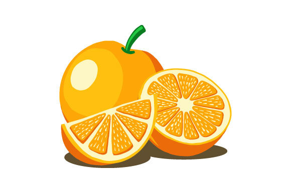 Orange Fruit Vector Illustration Graphic Illustrations By hartgraphic