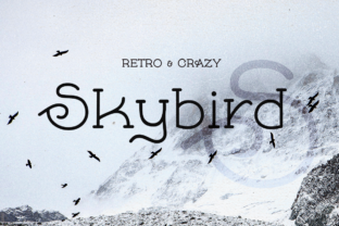 Print on Demand: Skybird Serif Font By Shaped Fonts
