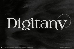 Print on Demand: Digitany Display Font By zealab fonts division