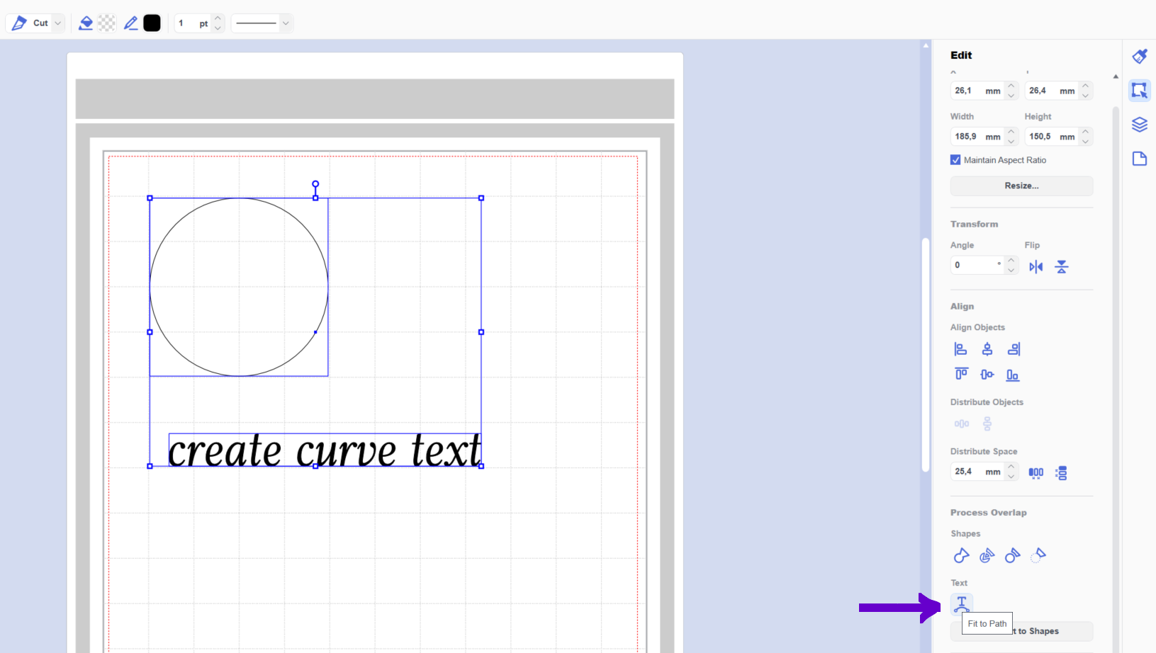 How to create curve text in Canvas Workspace