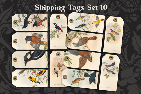 Print on Demand: Shipping Tags Birds Set 10 Graphic Illustrations By LilBitDistressed