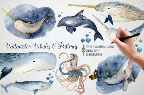 Print on Demand: Watercolor Whales & Patterns Graphic Patterns By By Anna Sokol