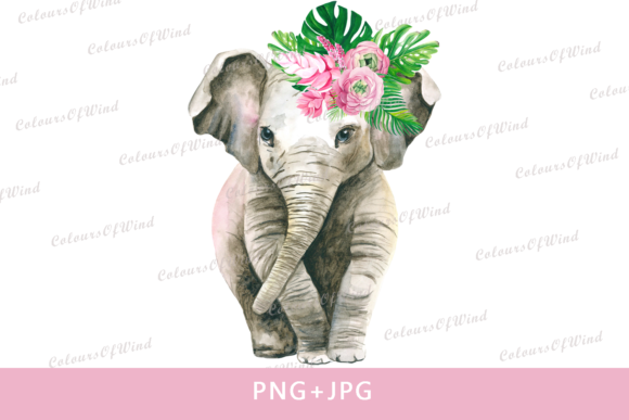 Print on Demand: Watercolor Girl Elephant Sublimation Graphic Illustrations By colours_of_wind