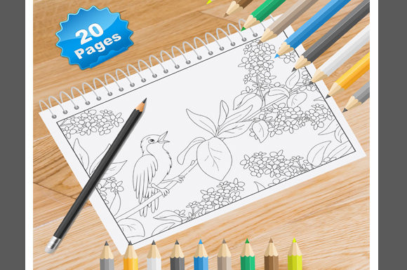 Print on Demand: 20 Spring Coloring Pages for Adults Graphic Coloring Pages & Books Adults By Coloring World