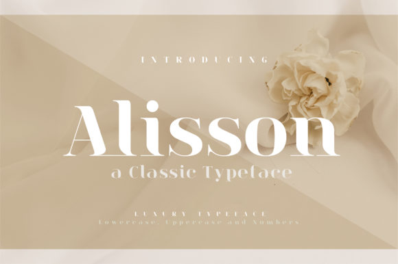 Print on Demand: Alisson Serif Font By geengraphy