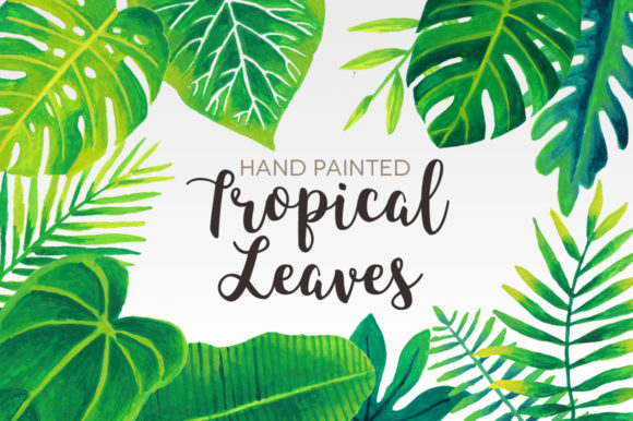 Tropical Leaves Watercolor Clip Art Graphic Illustrations By peachycottoncandy