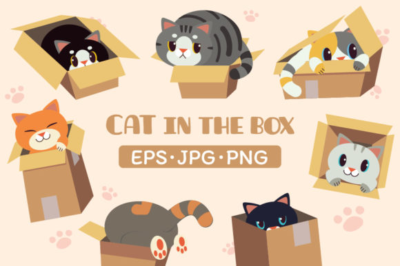 Cat in the Box Graphic Illustrations By Guppic the duck