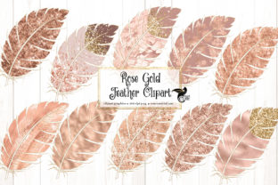 Print on Demand: Rose Gold Feathers Clipart Graphic Illustrations By Digital Curio