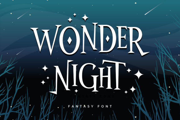 Print on Demand: Wonder Night Serif Font By Arterfak Project