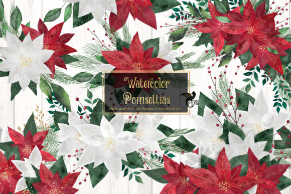 Print on Demand: Watercolor Poinsettias Clip Art Graphic Illustrations By Digital Curio
