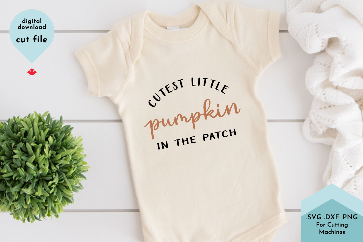 Cutest Little Pumpkin In The Patch Svg Graphic By Lettershapes Creative Fabrica