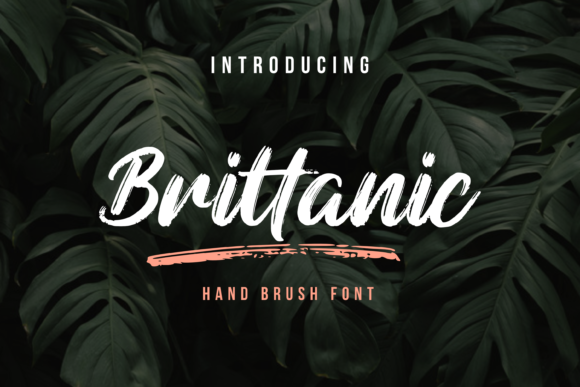 Print on Demand: Brittanic Script & Handwritten Font By Typestory