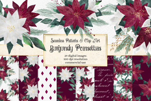 Print on Demand: Burgundy Poinsettias Graphic Illustrations By Digital Curio