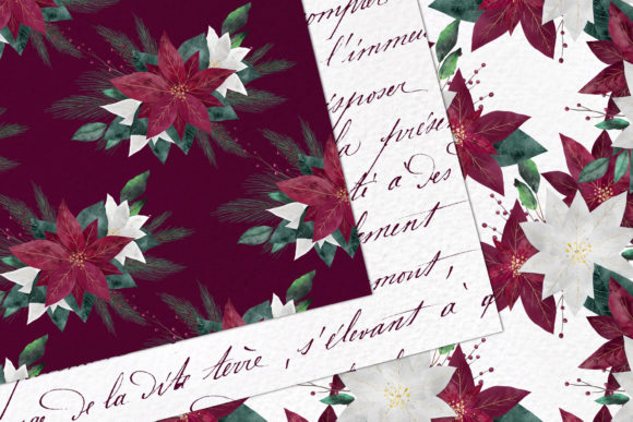 Burgundy Poinsettias Graphic Design