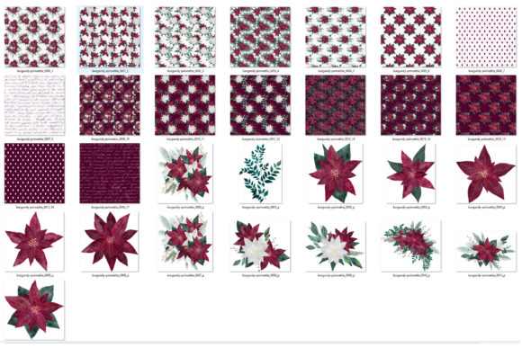 Burgundy Poinsettias Graphic Image