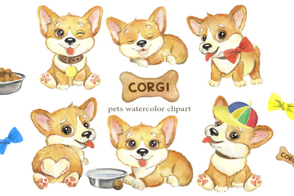 CORGI Puppies Watercolor Dog Clipart. Graphic Illustrations By EvArtPrint