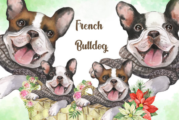 French Bulldog Watercolor Dog Clipart. Graphic Add-ons By EvArtPrint