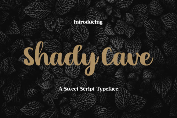 Print on Demand: Shady Cave Script & Handwritten Font By rometheme