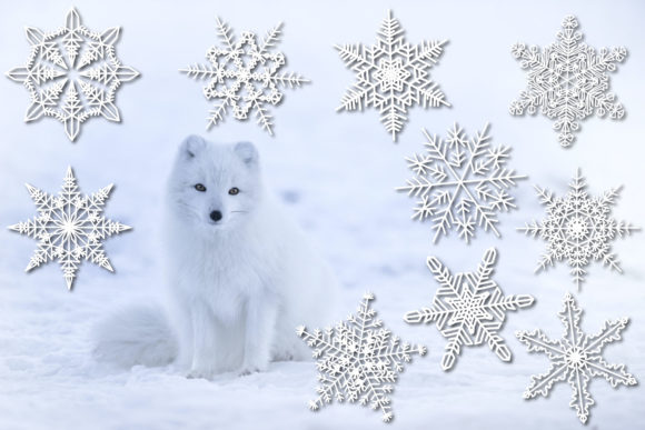 Snowflakes SVG 10 Cut Files Graphic Download